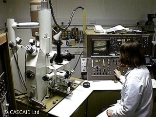 A woman, wearing a white lab coat, is sitting at a desk in a laboratory.  She is looking at a small monitor and is surrounded by scientific equipment.