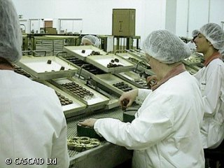 Numerous women, wearing white protective suits and hairnets, are sitting on a production line.    They are packing chocolate sweets into boxes.