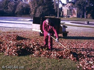 A man, wearing a boiler suit, is standing on a lawn.  He is raking leaves.