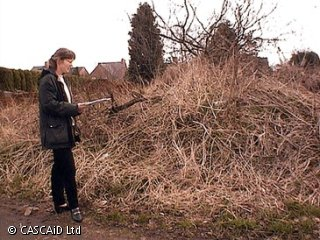 A woman is standing next to an area of brown wasteland.  She is writing on a sheet of paper.