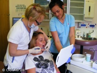 A female dentist is explaining tooth brushing to a patient, while a female dental nurse holds a mirror in front of the patient.